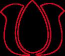 tulipán Szolnoki Gulyásfesztivál